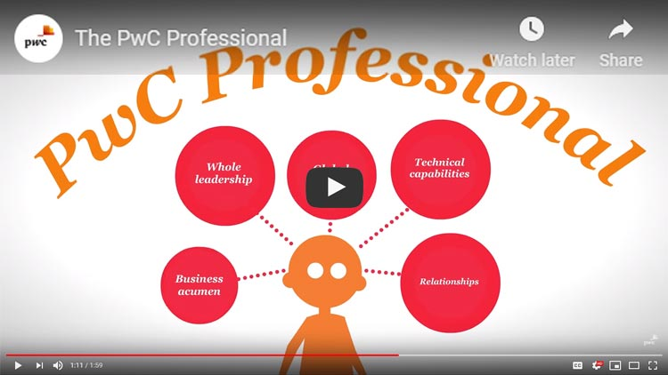 video describing what a pwc professional should be